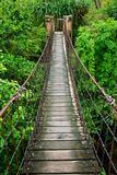 Rope walkway. Through the treetops in a rain forest Stock Photo