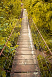 Rope walkway through Royalty Free Stock Photo