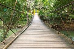 Rope walkway through the treetop Royalty Free Stock Photos