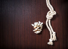 Rope with white coral on wood table Royalty Free Stock Photo