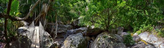 Rope and Wire suspended hanging bridge across a Jungle River in El Eden by Puerto Vallarta Mexico where movies have been filmed. In America stock image
