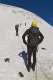 Roped Bergsteiger, die auf Gletscher in den österreichischen Alpen reisen Stockbild