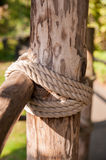 Roped tree structure Stock Images