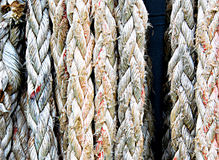 Frayed old ropes. Closeup of frayed old ropes hanging on a ship royalty free stock image
