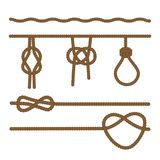 Ropes connected by different kinds of knots,. Vector illustration. A set of brown ropes connected by different kinds of knots,. Vector illustration Stock Images