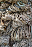 Ropes hanging to dry Royalty Free Stock Photography