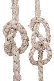Ropes with knot Stock Image
