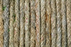 Ropes o arranjo fotos de stock royalty free