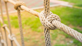 Ropes tied together to create a mesh for a workout at the playgr Royalty Free Stock Photo
