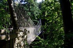 Ropewalk de cabane dans un arbre de jardin d'Alnwick Images stock