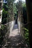 Ropewalk de cabane dans un arbre de jardin d'Alnwick Image libre de droits