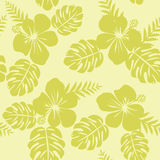 Ropical Pattern with Monstera leaves and hibiscus Stock Photo