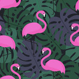 Ropical sömlös modell med rosa flamingo vektor illustrationer