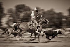 roping ομάδα θαμπάδων Στοκ Φωτογραφίες