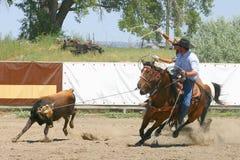 roping ομάδα στοκ εικόνες με δικαίωμα ελεύθερης χρήσης