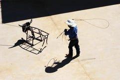 roping практики Стоковые Изображения