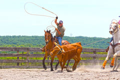 Roping Competition Royalty Free Stock Images
