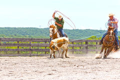 Roping Competition Royalty Free Stock Photo