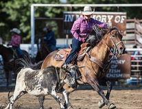 Roping Cowgirl. Steer roping  action at the Scott Valley Pleasure Park Rodeo in Etna, California Royalty Free Stock Photo