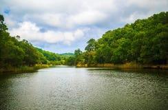 Ropotamo河在保加利亚 图库摄影