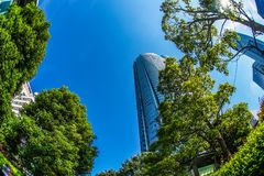 Roppongi Hills and the fresh green. Shooting location :Tokyo 23 wards royalty free stock images