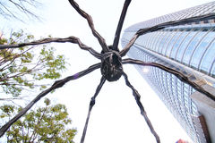 Roppongi-Spinne Stockfotos