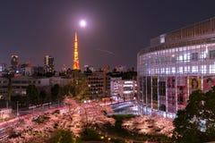 Roppongi, Tokyo, Giappone - 26 marzo 2018: punto di vista della ciliegia che sboccia a Mori Garden, Tokyo, Giappone immagine stock