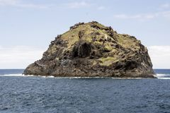 Roque de Garachico stock photo