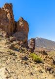 Roque de Garcia med den Teide vulkan Arkivbild