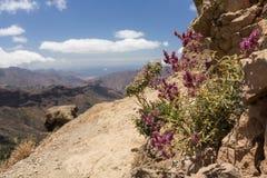 从Roque Nublo的一个看法在大加那利岛 库存图片