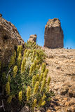 Roque Nublo Royalty Free Stock Photo