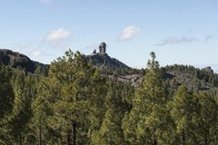 Roque Nublo, Gran Canaria, España. View of the Roque Nublo, from a forest of Canarian pines. Island of Gran Canaria, Spain royalty free stock photography