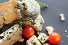 Roquefort cheese composition Royalty Free Stock Images
