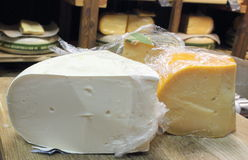Roquefort cheese and goat cheese Royalty Free Stock Photos