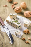 Roquefort cheese Royalty Free Stock Photography