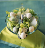 Roquefort salad with pear sorbet Stock Photography