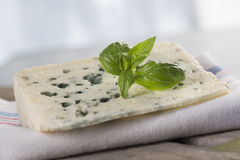Roquefort soft blue french cheese Stock Image