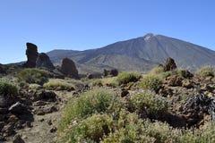 Roques de García, EL Teide, Tenerife imagem de stock