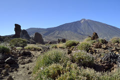 Roques de Garcia, EL Teide, Tenerife Στοκ Εικόνα