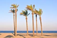 Roquetas de mar, Испания Стоковое Изображение RF