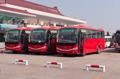 Ror av rött bussar Royaltyfri Bild
