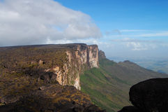 Roraima cliff - Venezuela Royalty Free Stock Photo