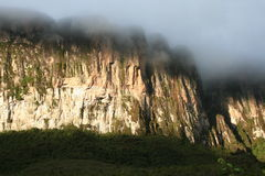 Roraima cliffs Stock Photos