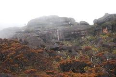 Roraima Mountain - Venezuela Stock Image