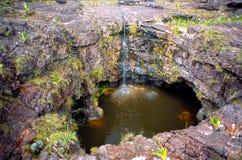 Roraima Tepui上面污水池 库存图片
