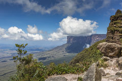从Roraima tepui的看法在薄雾的Kukenan tepui - Venez 免版税图库摄影