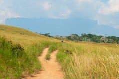 Roraima Tepui, Gran Sabana,委内瑞拉剪影  免版税库存图片
