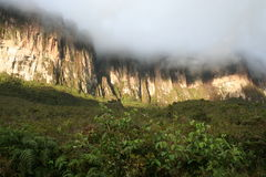 Roraima tepui Royalty Free Stock Photo