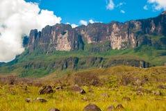Roraima Tepui, Gran Sabana, Venezuela Fotografia Stock Libera da Diritti