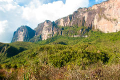 Roraima Tepui, Gran Sabana, Venezuela Fotografia Stock